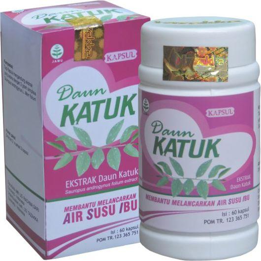 Obat Herbal Daun Katuk Untuk Memperlancar Produksi Air