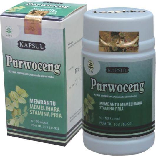 foto gambar produk herbal purwoceng untuk obat kuat alami dan penambah stamina pria