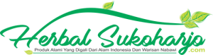 logo header toko online herbalsukoharjo