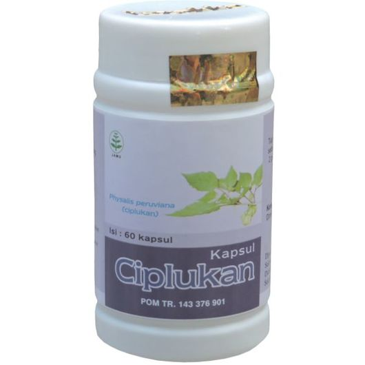 Obat Herbal Ciplukan Tazakka Untuk Kencing Manis Dan