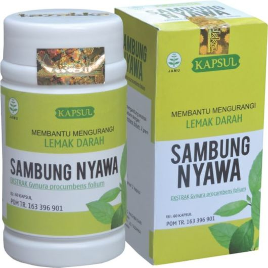Obat Herbal Alami Untuk Penyakit Kolesterol Atau Lemak Darah