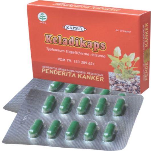 foto gambar manfaat tanaman produk herbal keladi tikus keladikaps kemasan kapsul blister tazakka herbal sukoharjo