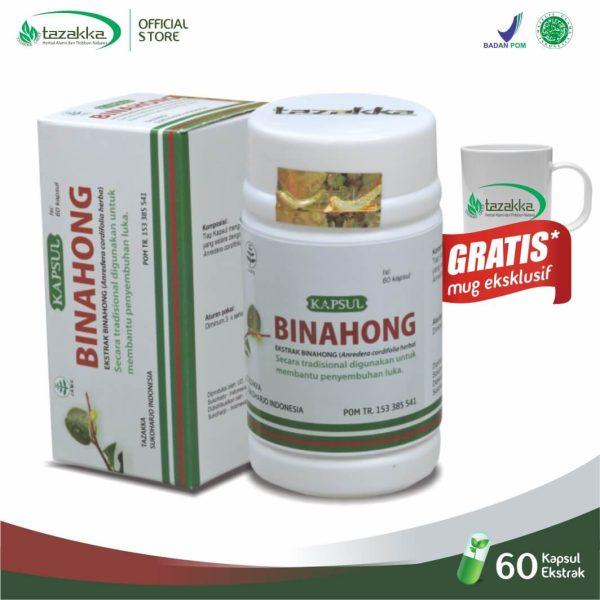 Obat Binahong