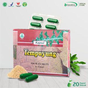 Daun Tempuyung Blister Herbal Tazakka