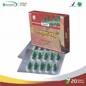 Daun Tempuyung Blister Herbal Tazakka