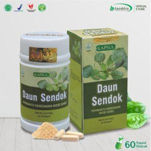 Ekstrak Kapsul Daun Sendok Herbal Tazakka Original