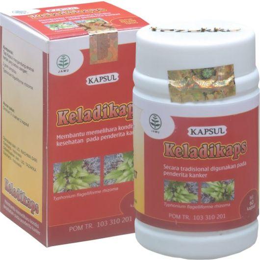 foto gambar manfaat tanaman produk herbal keladi tikus keladikaps
