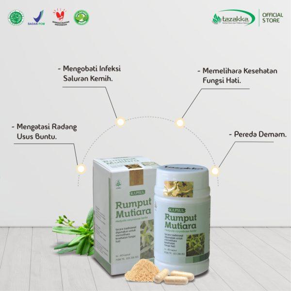 Manfaat Rumput Mutiara Untuk Kesehatan