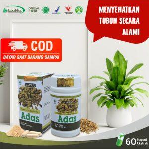 Obat Biji Adas Herbal COD