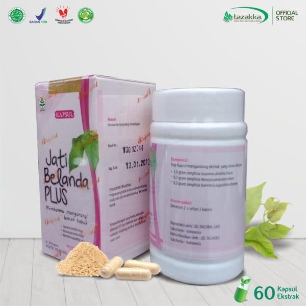 Obat Diet Herbal Ampuh Daun Jati Belanda