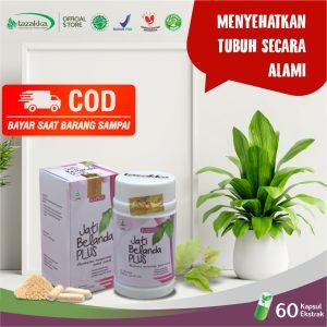 Obat diet herbal ampuh bpom Kapsul Daun Jati Belanda Tazakka COD