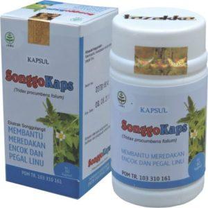 foto gambar produk herbal tazakka herbal sukoharjo manfaat tanaman songgolangit songgokaps kemasam kapsul botol