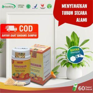 Temulawak Curcuma Herbal Tazakka Official Store 60 Kapsul Obat Lambung Liver Penambah Nafsu Makan COD