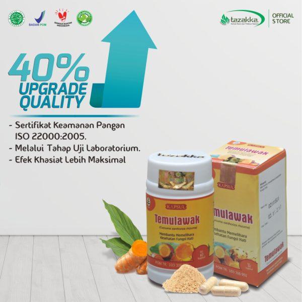 Temulawak ori Herbal Tazakka