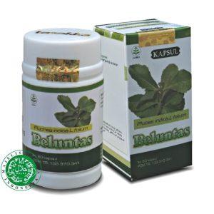 kapsul ekstrak beluntas herba; bau badan bau mulut bau ketiak dari tazakka