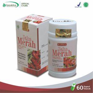 jahe merah herbal