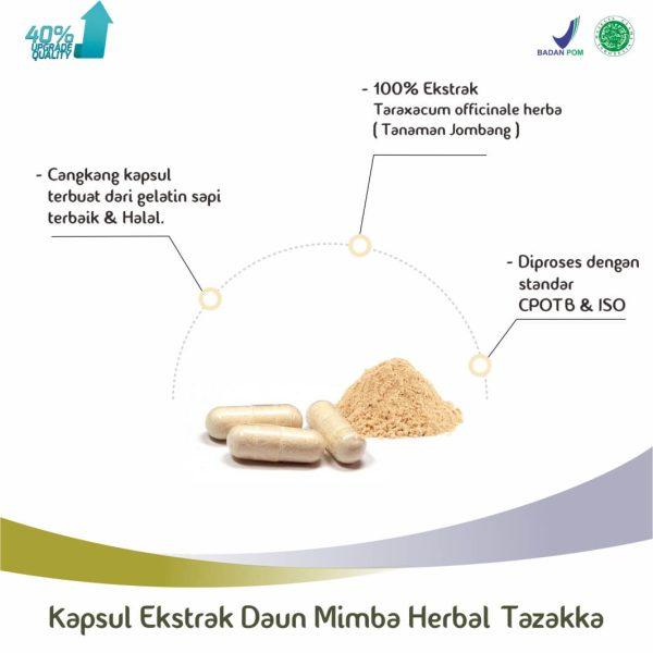 Ekstrak Kapsul Daun Mimba Herbal Tazakka