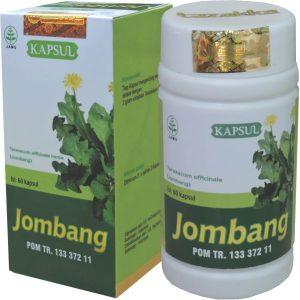 JUAL obat diabetes melitus alami kapsul Jombang Tazakka