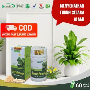 Jual Kapsul tanaman Jombang herbal Tazakka bisa COD Bayar ditempat