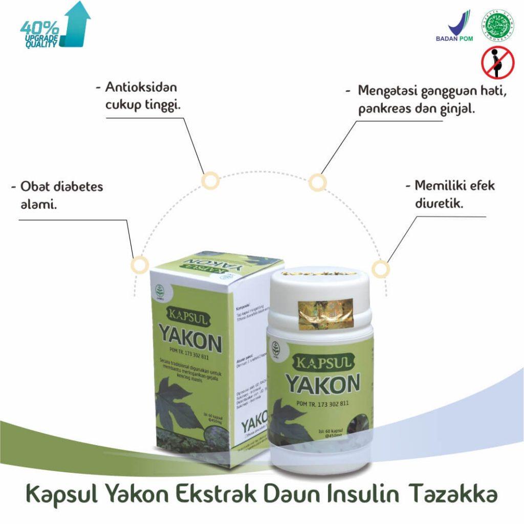 Manfaat Daun Insulin Yakon