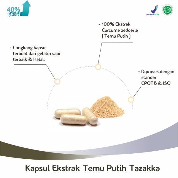 curcuma zedoaria extract capsule