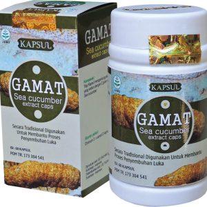 foto gambar produk herbal gamat tazakka ekstrak sea cucumber teripang emas untuk membantu proses penyembuhan luka secata alami karena mengandung Cell Growth Factor sehingga dapat meregenerasi sel dengan cepat.