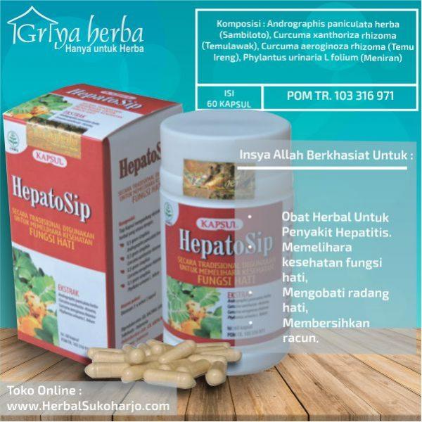 OBAT HERBAL HEPATITIS, OBAT UNTUK LIVER Kapsul Hepatosip Tazakka Group
