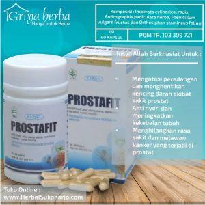 foto gambar contoh Obat produk herbal prostafit untuk mengobati penyakit prostat secara alami dan aman bagi tubuh
