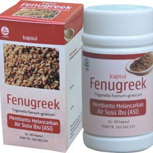 contoh foto gambar produk Fenugreek Obat Herbal Kapsul Untuk Membantu Melancarkan Produksi Air Susu Ibu (ASI) Secara Alami.