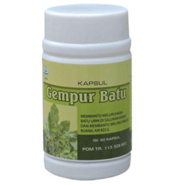 Obat Ginjal Alami Dan Aman Dengan Herbal Gempur Batu