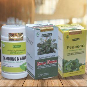 contoh foto gambar katalog produk herbal tazakka sukoharjo jawa tengah paket herbal dari Tazakka mengandung kombinasi tanaman herbal alami yang bisa digunakan untuk membantu mengobati penyakit stroke