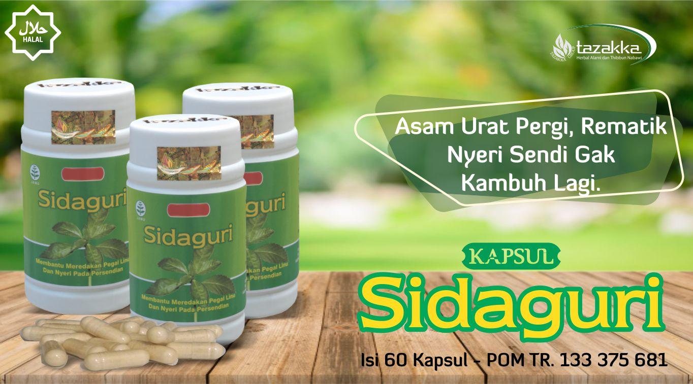 contoh foto gambar katalog slider produk obat herbal asam urat rematik nyeri sendi ampuh herbal sidaguri halal tanpa efek samping produk tazakka