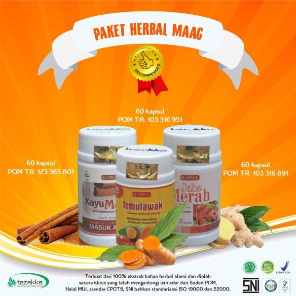 Obat Asam Lambung Herbal Maag