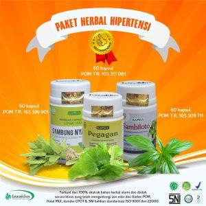 Obat Darah Tinggi Hipertensi herbal tazakka