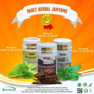 obat penyakit jantung herbal alami Tazakka